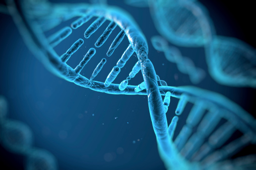 DNA Testing 101 - Oschmann Employee Screening Services